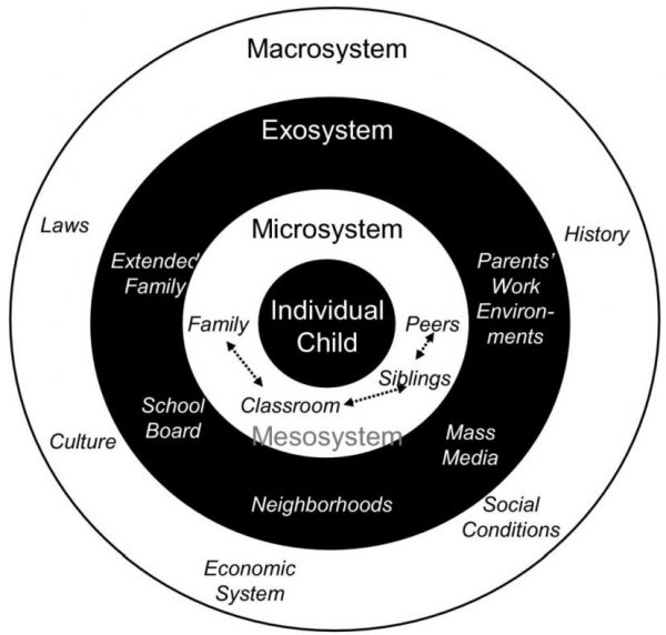 Systems Theory in Psycology